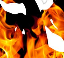 Mega Charizard Y used Blast Burn Sticker