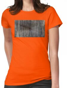 Dream Gate Womens Fitted T-Shirt