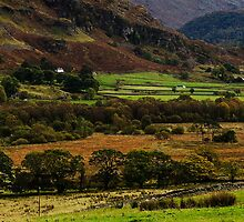 Dale Bottom by Mike Church