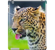 Leopard showing his tongue iPad Case/Skin