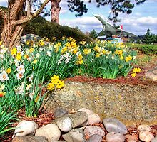 Spring At Brooklands - HDR by Colin  Williams Photography