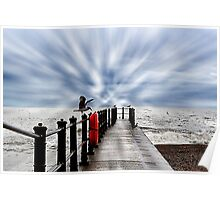 Seagulls, sea view Poster