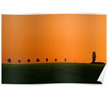 Evening summer landscape with trees Poster