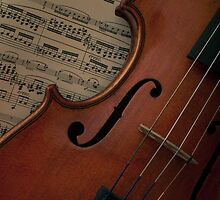 Rare old violin with bow by Pixmover