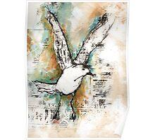 Joathon seagull Poster