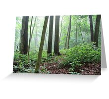 Into the Misty Wild Forest Greeting Card
