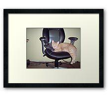 Office Buddies  Framed Print