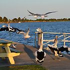 Crowded Runway by Gary Kelly