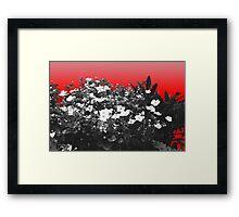 Flower Shock Framed Print