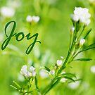 Joy by KellyHeaton