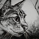 The Cat by Forfarlass
