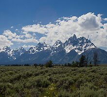 A Sunny Day at Grand Teton National Park by Spencer Dickson