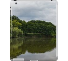 Green and Gray Summer Mirror iPad Case/Skin