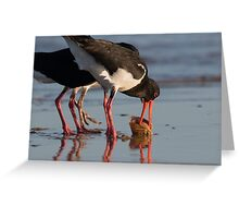 Sunset Food Scuffle Greeting Card