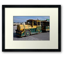 Schonbrunn Castle Shuttle Framed Print
