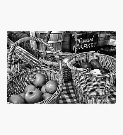 Schnepf Farms Farmers Market Study 4 Photographic Print