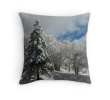 """ Winters Vision "" Throw Pillow"