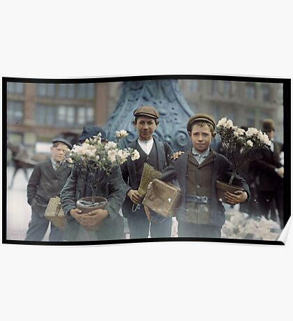 Boys with Flowers, New York. 1908. Poster