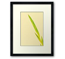 Green Tip Framed Print
