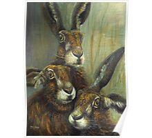 Hare Trio Poster