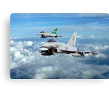 100 Years of 3 Squadron Canvas Print