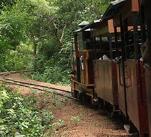 Journey by nabangkur
