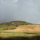 Rainbow by Paul  Green