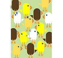 Colourful Easter Chicks pattern Photographic Print