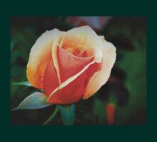 Peach rosebud T-Shirt