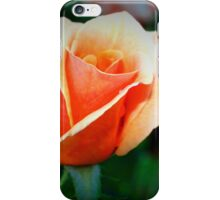 Peach rosebud iPhone Case/Skin