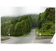 Forest near Sete Cidades Poster