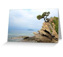 pine tree on a rock Greeting Card