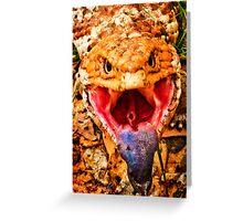 Blue Tongue Lizard Greeting Card