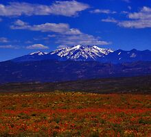 Utah  by SHickman