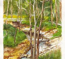 Mullum Mullum Creek at Eltham, Victoria by Dai Wynn