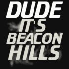 Dude, it's Beacon Hills by SevLovesLily