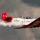 It's a Plane by Larry Llewellyn
