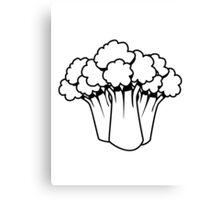 Vegetables of broccoli nature garden Canvas Print