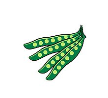 Vegetables beans organic garden Photographic Print