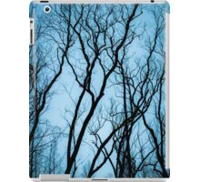 The Remains iPad Case/Skin