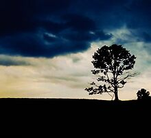 Lonely Tree by MadVonD