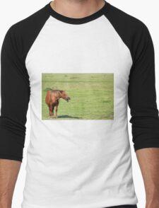 brown horse neigh Men's Baseball ¾ T-Shirt