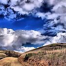 Bane Canyon-Chino Hills by Rosalee Lustig