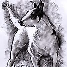Charcoal Sketch of Pitbull by chilby