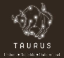 Taurus Products by btns