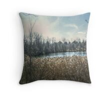 Pond off Hinchmann Drive in Wayne NJ Throw Pillow