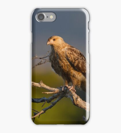 The Open Vista iPhone Case/Skin
