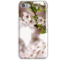 the bumble bee in the cherry tree iPhone Case/Skin
