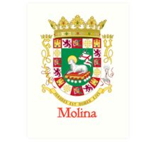 Molina Shield of Puerto Rico Art Print