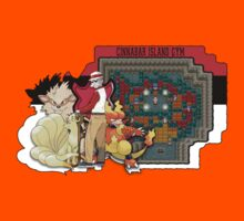 Pokemon - Cinnabar Island Gym (Blaine) by Brandon Scribner